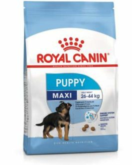 Royal Canin Maxi Puppy, 1Kg