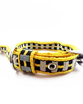 Collar Set Lesh For Puppy Above 2 Month