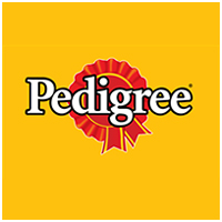 Pedigree : Pedigree Dog Food lucknow